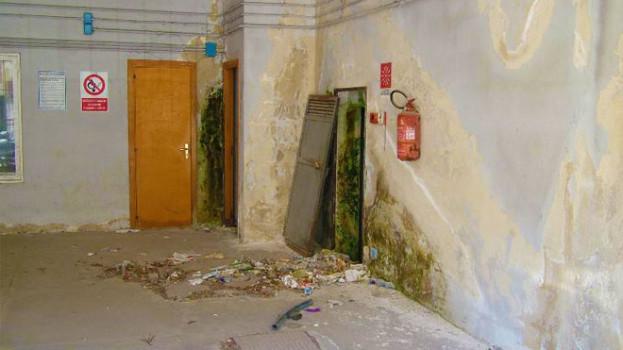 Matera: via Casalnuovo invasa dai topi