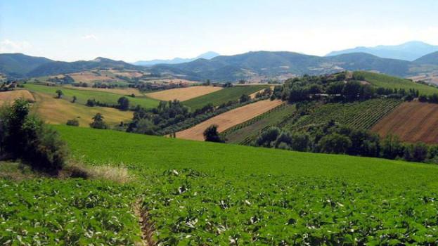 FONDI EUROPEI PER AGRICOLTURA E PESCA: LA BASILICATA NON LI SFRUTTA
