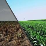 Convegno sull' inquinamento nel settore agricolo a Marconia: presente il Deputato L'Abbate del M5S