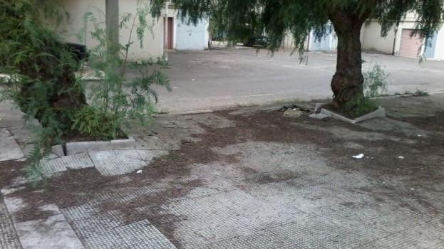 Largo Gianturco abbandonato a sé stesso