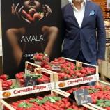 Cresce la voglia di Candonga Fragola Top Quality nell'Alta cucina italiana. Prossime tappe in Basilicata.