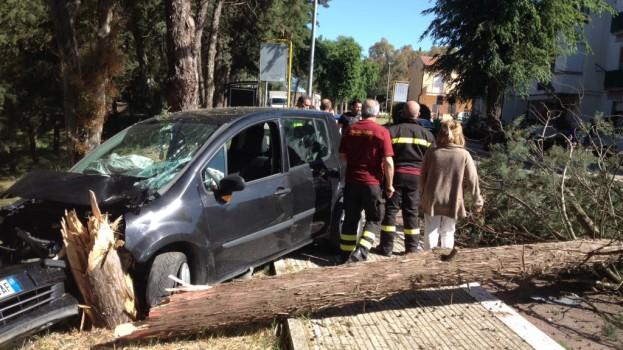 Matera: auto contro un albero a Serra Venerdì, un ferito