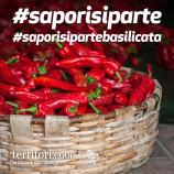 Al via il challenge Instagram dedicato ai prodotti della Basilicata organizzato da Coop